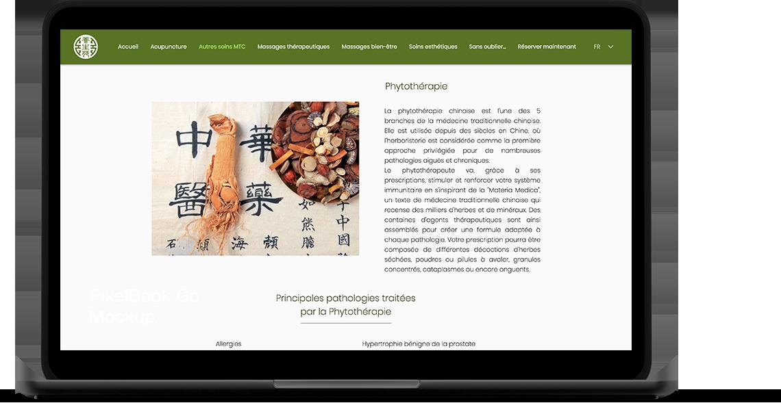 Health Garden Wellness Portfolio laptop